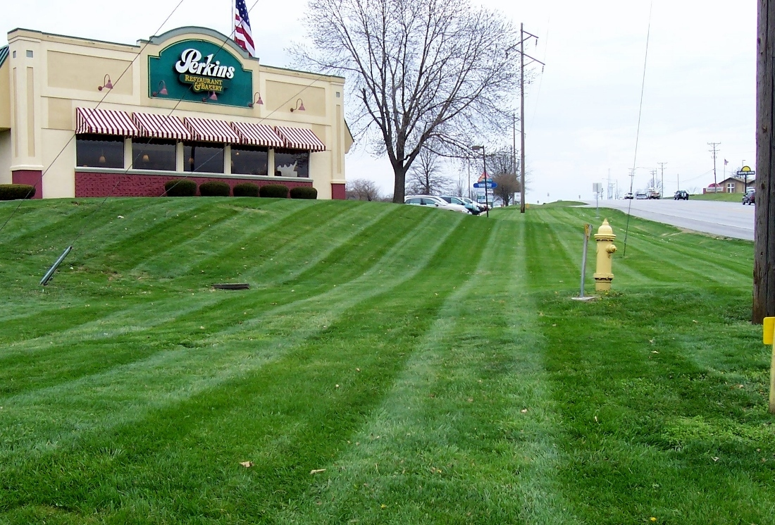 Green Grass Lawn Care Nebraska : Weed control for crabgrass dandelions green grass lawn sprinklers